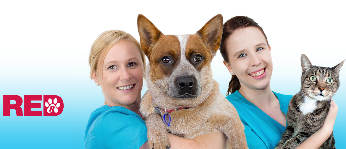 Northgate Vet - servicing  the community for 35yrs